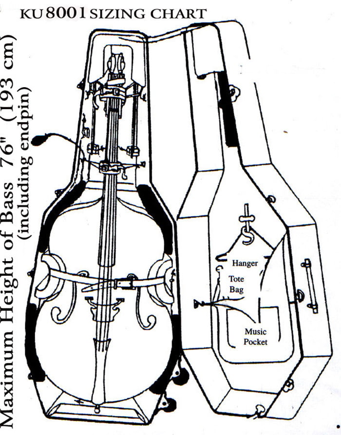Acoustic Electric Upright Bass